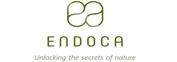 4 - Endoca 1